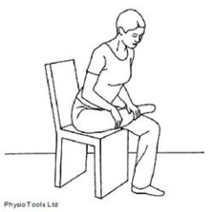 """Search Results for """"Piriformis Stretching Exercises Print ..."""